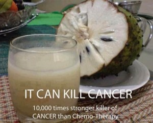 Graviola: A Legendry fruit plant to cure CANCER